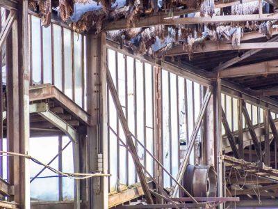 Sanierung im Bestand einer Industrieproduktion